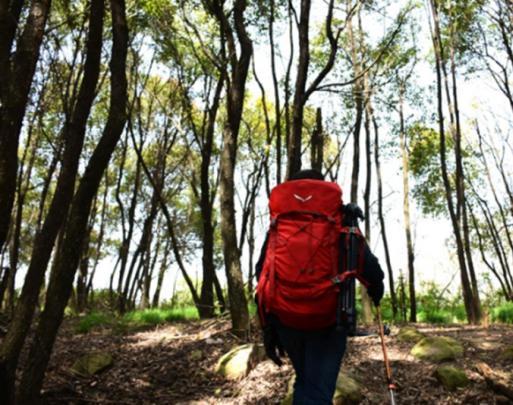 MOUNTAIN YOYO登山杖体验:减轻腿部负担就靠它